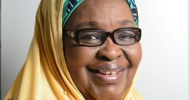 Hajiya Saratu Iya Aliyu: The 1st female Northerner to head NACCIMA as National President 6