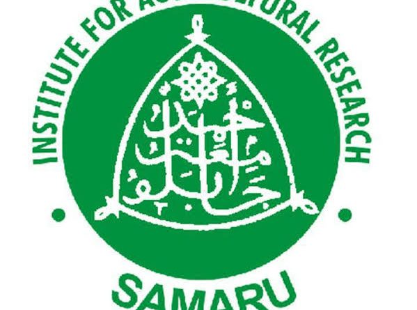 SAMPEA 20-T: FG approved release of PBR Cowpea developed by scientists at IAR, ABU Zaria 9