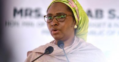 Mrs. Zainab Ahmed: 24th Nigerian Minister of Finance, Budget and Nat'l Planning 5