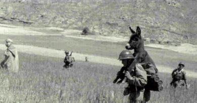 ASUU Strike and that picture from world war II - Prof Rabi'u Nasiru 6
