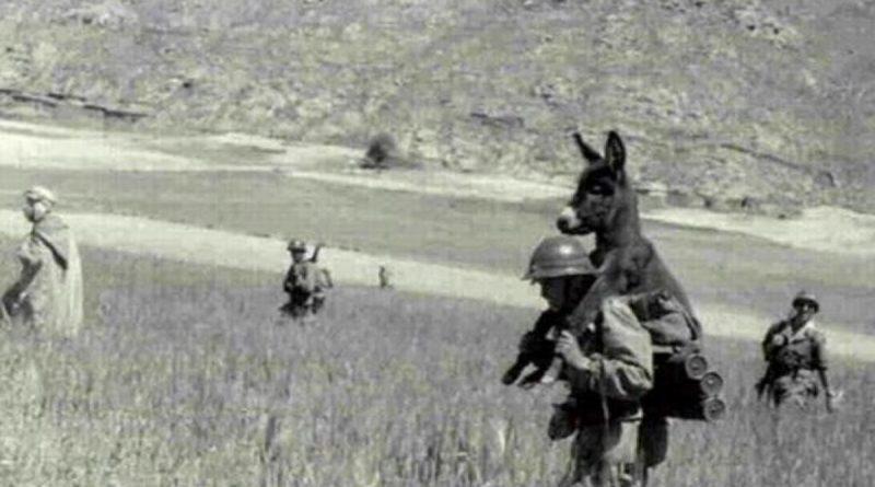 ASUU Strike and that picture from world war II - Prof Rabi'u Nasiru 1