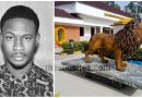 Amazing Photos of the roaring lion of 4th battalion Army HQ Jaji done by Abusites