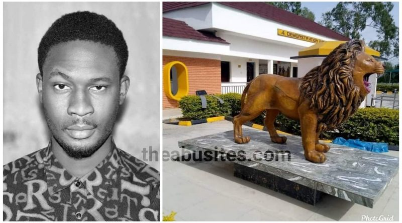Amazing Photos of the roaring lion of 4th battalion Army HQ Jaji done by Abusites 2