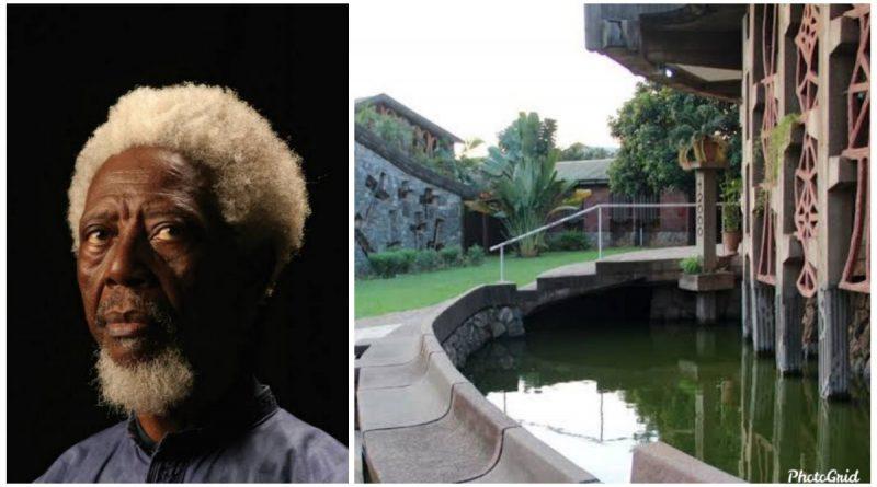 Demas Nwoko: The renowned architect decolonising Nigerian design 1