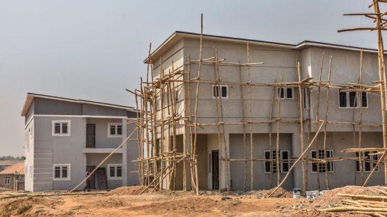 Demas Nwoko: The renowned architect decolonising Nigerian design 2