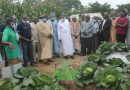 ABU Agric complex capable of transforming Nigeria's economy