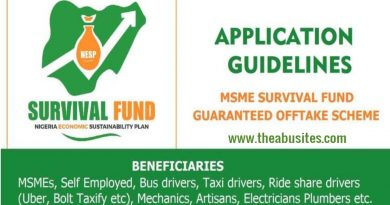 How to Apply for N75Bn MSMEs Survival Fund for Nigerian Entrepreneurs 5